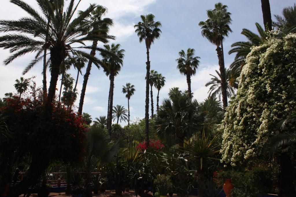 Jardín Majorelle Marrakech
