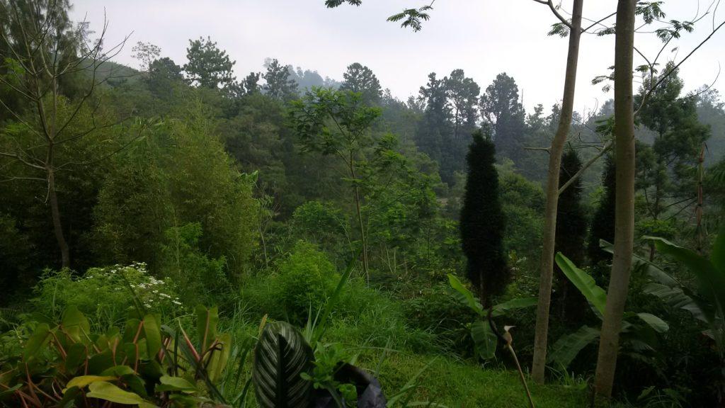 Parque Natural Tengger - Semeru
